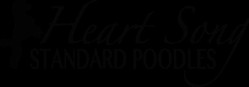 Heart Song Standard Poodles